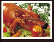 名物 レチョン豚の丸焼き