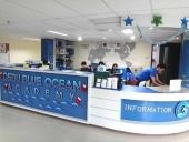 Cebu Blue Ocean Academy イメージ20